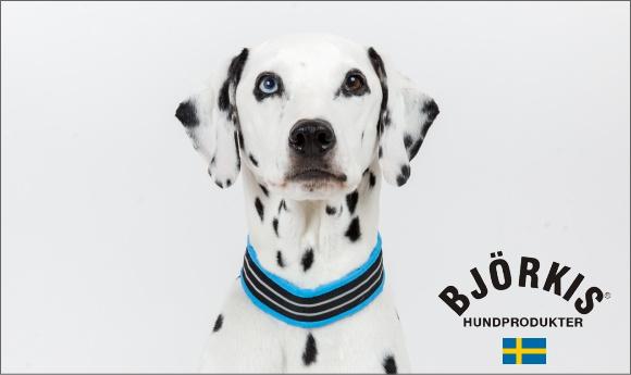 スウェーデンのおすすめ犬用品ビヨルキス bjorkis ハーフチョークカラー、ハーネス、犬用リード、ロングリード|犬グッズ通販HAU