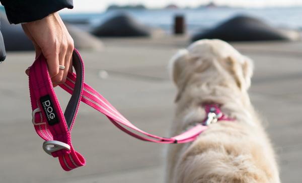 長さを変えられる北欧デザインのおしゃれな犬用リード|ドッグコペンハーゲン アーバントフリースタイルリーシュ|犬グッズ通販HAU