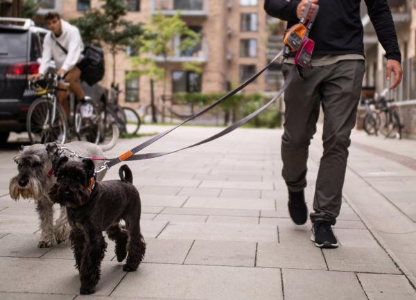 犬用リード|ドッグコペンハーゲン アーバントレイルリーシュ|犬グッズ通販HAU