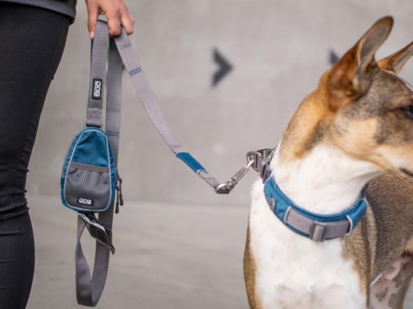 リードに取りつけるポーチ、バッグ|ポーチオーガナイザー ドッグコペンハーゲン|犬グッズ通販HAU