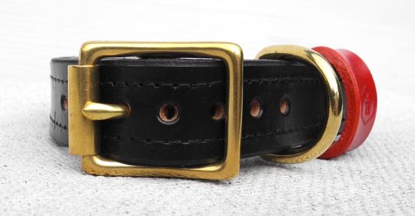 真鍮(ブラス)のゴールドDカン、バックルの革製犬用首輪|ブライドルレザードッグカラー パッド付 グッズ通販HAU
