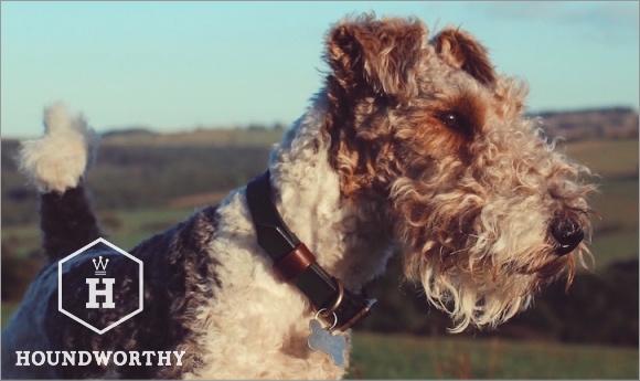 英国犬具ブランドHOUNDWORTHY おすすめの革製首輪、革製リード、愛犬家へのプレゼント、ギフト 犬グッズ通販HAU