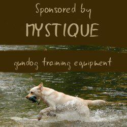 水でも陸でも使えるおすすめ犬のトレーニングダミー&おもちゃ
