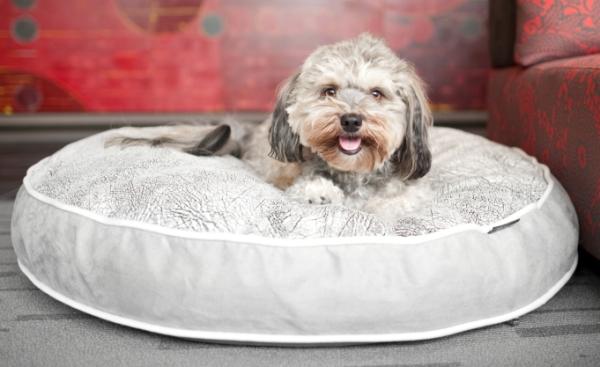 犬用ベッド p.l.a.y ラグジュアリーペット用おすすめの犬のベッド 犬グッズ通販HAU