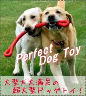 丈夫な犬用おもちゃ|パーフェクトドッグトイ(噛む、投げる)|犬グッズ通販HAU(ハウ)