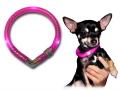 小型犬用セーフティーLEDライト LEUCHTIE Mini|犬グッズ通販HAU