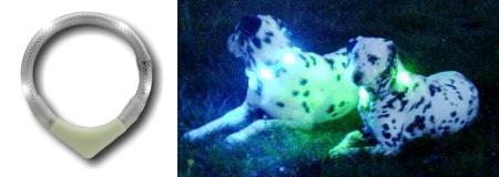 全方向性の光で視認性抜群|犬の交通安全、光る首輪|LEDドッグカラー (犬用セーフティーライト)|犬グッズ通販HAU