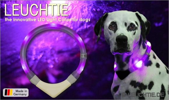 犬用ライト、夜のお散歩用交通安全グッズ、光る首輪|LEDドッグカラー LEUCHTIE (犬用セーフティーライト)|犬グッズ通販HAU