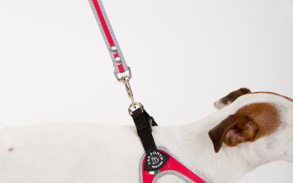 軽い、丈夫、ノンアレルギー、水に強い、洗える素材の犬用リード|Tre Ponti トレ・ポンティ|犬グッズ通販HAU