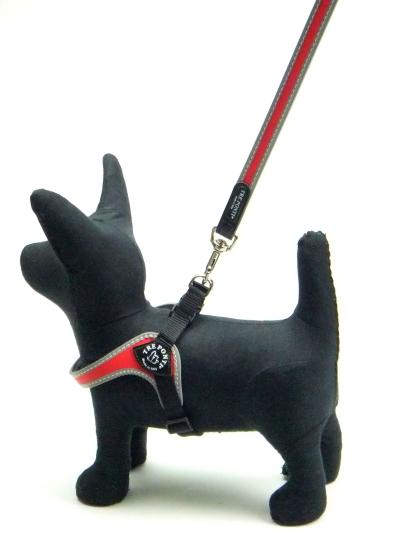 ハーネス・首輪とのおそろいにおすすめの小型犬用リード|Tre Ponti トレ・ポンティ|犬グッズ通販HAU