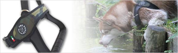 中型犬用・大型犬用ハーネスPrimo(プリモ)に新色カモ入荷|トレポンティ|犬グッズ通販HAU