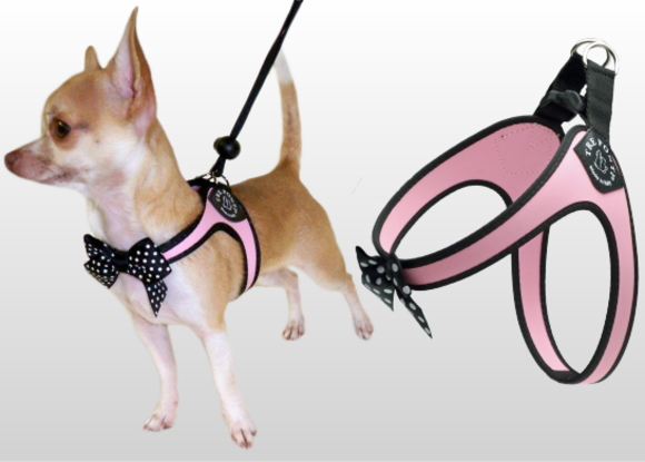 超小型犬、猫、小型犬用ハーネス|Fibbia-Polkadot Bow  Tre Ponti トレ・ポンティ|犬グッズ通販HAU