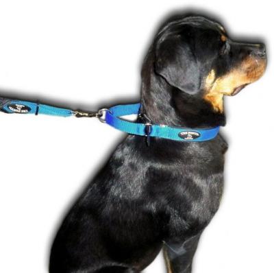 中型犬・大型犬用首輪 ドッグカラー Tre Ponti トレ・ポンティ|リードを繋ぐ金具・Dカン|犬グッズ通販HAU