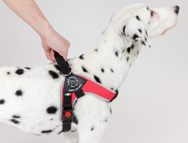 エマージェンシーハンドル|Brio ブリオ Tre Ponti(トレ・ポンティ)|犬グッズ通販HAU