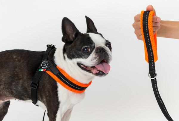 クッションソフトメッシュリード|持ち手がやわらかい犬用リード|犬グッズ通販HAU