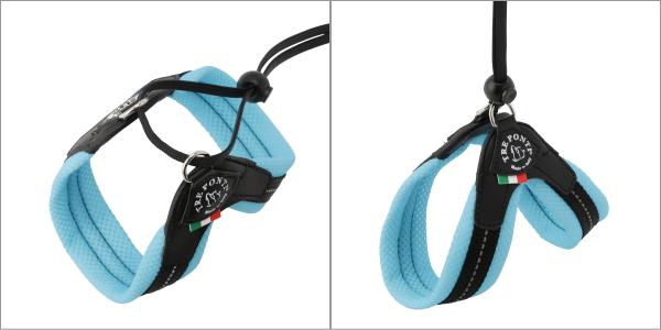 トレポンティ(Tre Ponti) リベルタ Liberta 着用例|ミニチュアダックス、チワワ、トイプードルなどの小型、超小型犬用ハーネス