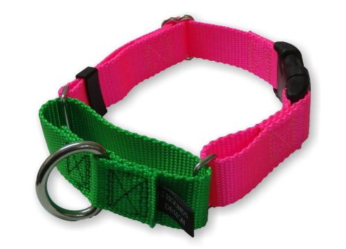 ホットピンク×ネオングリーン|バックルマーチンゲールカラー(犬用首輪|犬グッズ通販HAU